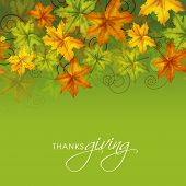 Colorful maples leaves on green background. Poster, banner or flyer design for Thanksgiving Day celebrations.