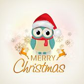Merry Christmas celebrations, cute owl in santa hat and red scarf wishing on beautiful xmas ornaments decorated background.