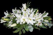 Spray of White Lilies