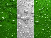 stock photo of nigeria  - a flag of Nigeria with rain drops - JPG
