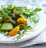 Arugula salad with tomatoes and cucumber