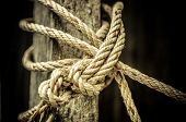 Close up of rope And Knot On Background