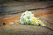 stock photo of sand lilies  - Wedding bouquet on the rocks at the beach - JPG
