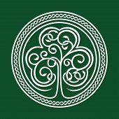 St. Patrick's day. Shamrock on a green background