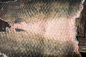 Arapaima Pirarucu skin over wooden table, top view, background