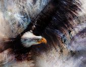 picture of eagles  - beautiful airbrush spirit eagles on an abstract background one stretching his black wings to fly on abstract background - JPG