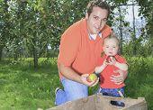 Father and son having fun on the apple season