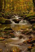 Small creek Ponikly