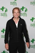 LOS ANGELES - FEB 18:  Julian Sands at the Global Green USA's 12th Annual Pre-Oscar Party at a Avalon on February 18, 2015 in Los Angeles, CA