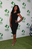 LOS ANGELES - FEB 18:  Denise Boutte at the Global Green USA's 12th Annual Pre-Oscar Party at a Avalon on February 18, 2015 in Los Angeles, CA