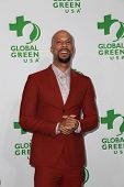 LOS ANGELES - FEB 18:  Common at the Global Green USA's 12th Annual Pre-Oscar Party at a Avalon on February 18, 2015 in Los Angeles, CA