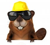stock photo of beaver  - Fun beaver - JPG