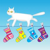 white cat on a clothes line
