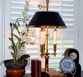 Lamp, orchid, shutters and more
