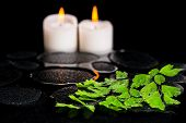 Green Branch Adiantum Fern With Drops And Candles On Zen Basalt Stones In Reflection Water, Beautifu