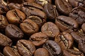 stock photo of spit-roast  - Macro of roasted coffee beans laying in rows with extended depth of field - JPG