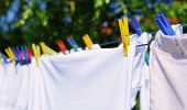 stock photo of laundry  - Fresh white laundry hang on the clothesline with colorful pegs - JPG