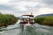 picture of dalyan  - DALYAN TURKEY  - JPG