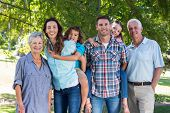 pic of extended family  - Extended family smiling in the park on a sunny day - JPG