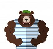 picture of bear  - Angry bear in striped vest - JPG