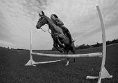 picture of horse girl  - Girl on horse jumping at summer day black and white photo  - JPG