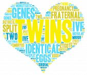 foto of zygote  - Twins heart shaped word cloud on a white background - JPG