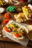 picture of wiener dog  - Homemade Chicago Style Hot Dog with Mustard Relish Tomato and Onion - JPG