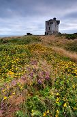 stock photo of ireland  - Old castle ruins on cliffs in Crookhaven County Cork Ireland - JPG