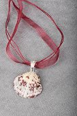 image of scallops  - Close up of a calico scallop pendant hanging on a red chiffon cord - JPG