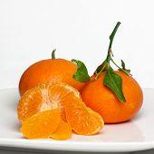 Sweet, juicy Clementines.