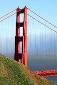Summer Sf Golden Gate poster