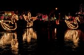 Swans In Christmas Lights At Night