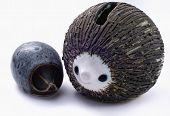 Pot Hedgehogs