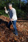 Senior Man Raking Leaves