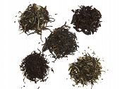 Black, Green And White Tea
