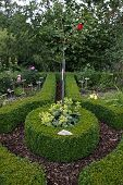 Cottage Garden With Boxwood Hedges