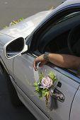 Bridal Limousine