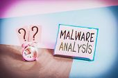 Conceptual Hand Writing Showing Malware Analysis. Business Photo Text Performs Deep Analysis Of Evas poster