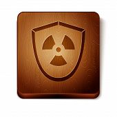 Brown Radioactive In Shield Icon Isolated On White Background. Radioactive Toxic Symbol. Radiation H poster