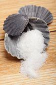 Sugar In Shell