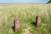 Cheyenne headstones at Custer National Park
