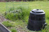 Garden Compost Bin And Pile