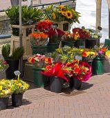 Bloemen marktlieden