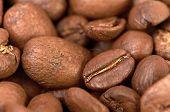 Fress Kaffeebohnen können als Hintergrund verwenden.