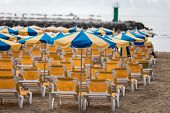 Rows Of Yellow Sunbeds With Blue And Yellow Parasols At The Beach Playa De Puerto Rico On The Canary poster