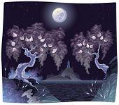 Romantic landscape on the sea in the night. Vector illustration.