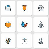 Meditation Icons Colored Line Set With Bamboo, Meditation, Flower And Other Meditation Elements. Iso poster