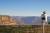 Grand Canyon Wonder