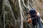 Young Woman With Shoulder Bag And Using A Camera To Take Photo Giant Big Tree, Size Comparison Betwe poster