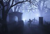Cemitério de vegetação enevoado